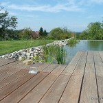 piscine bio 5 di luca paysagiste
