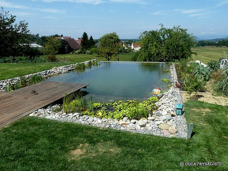 Bassin d agr ement baignade poissons di luca for Amenagement de piscine exterieur