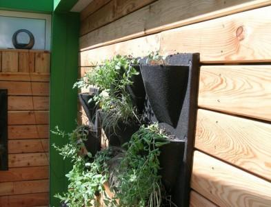 Bardage et mur végétalisé