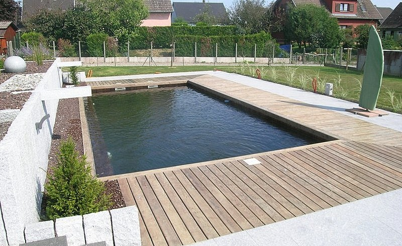 piscine traditionnelle 4 di luca paysagsite
